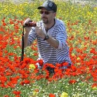 Алфизик dm, 58 лет, Телец, Иерусалим